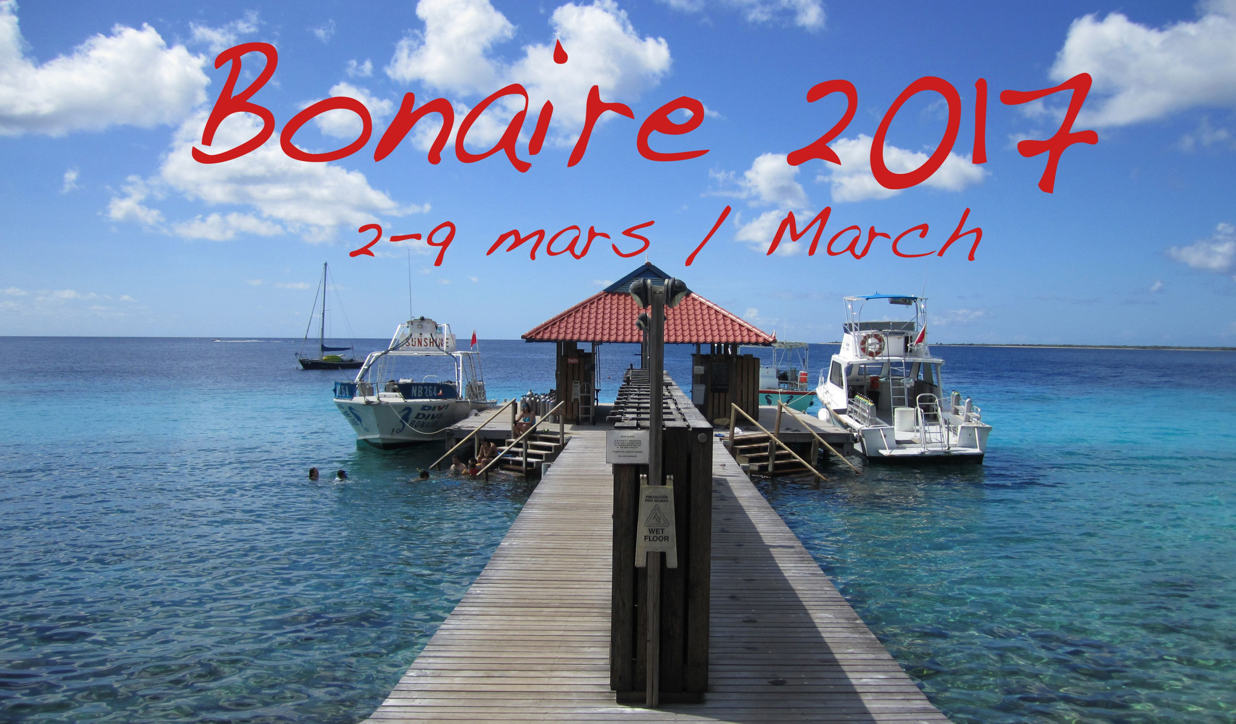 Scuba diving trip to Bonaire with Action Scuba Montreal