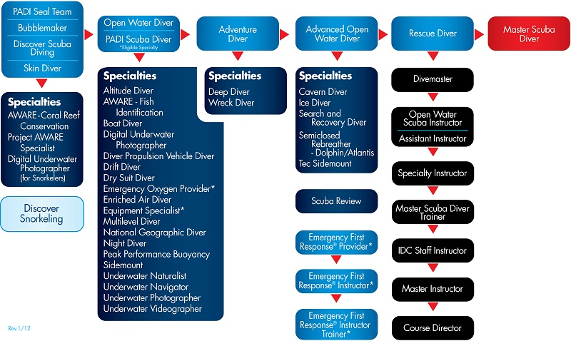 PADI Course progression chart Action Scuba Montreal